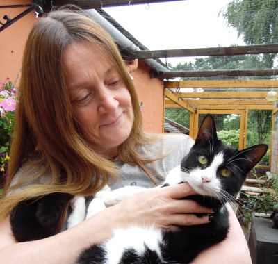 Cat Sitter Stoke and Newcastle